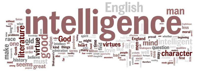 best quotes on intelligence
